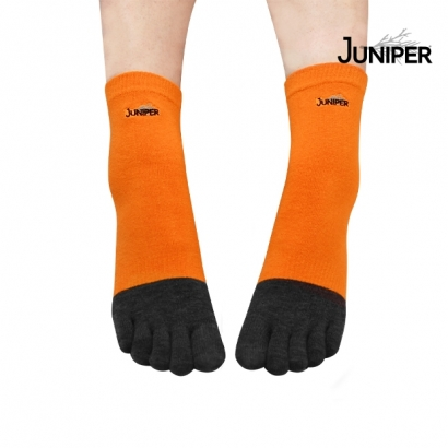 TJP011-大頭圖-620x620-虎皮橘2.jpg